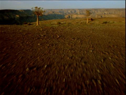 track forward over sandy desert terrain over cliff edge and river in valley below - ムラがある点の映像素材/bロール