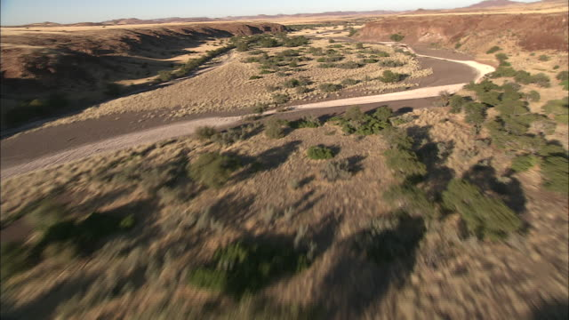 Track forward over trees and shrubs growing along the flood plain of a river as it flows across the Kalahari Desert. Available in HD.