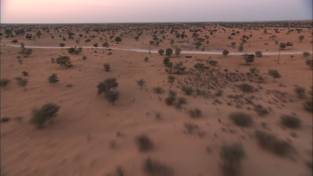 Track forward over white trails and pink sands of the Kalahari Desert at sunset. Available in HD.