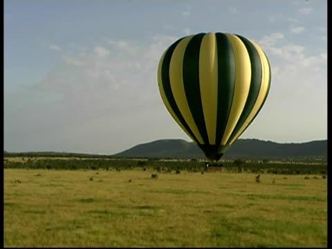 track forward towards hot air balloon over savanna, serengeti plains, tanzania - mittelgroße tiergruppe stock-videos und b-roll-filmmaterial
