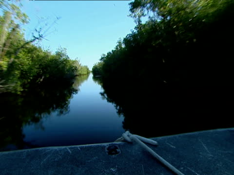 Track forwards from boat through Everglades
