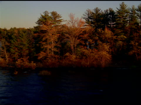 stockvideo's en b-roll-footage met track forwards over lake and autumn trees, rhinebeck, new york state - plant attribute