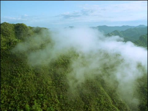 track forwards through wispy clouds over rainforest, amazon - rauchartig stock-videos und b-roll-filmmaterial