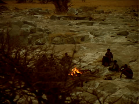 stockvideo's en b-roll-footage met track left around bare tree to reveal basarwa tribesmen circling camp fire, botswana - bare tree
