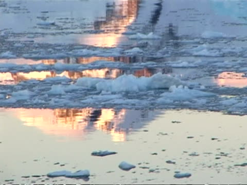 mcu track left past ice floes in still water at dusk, paradise bay area, antarctic peninsula - antarctic peninsula stock videos & royalty-free footage