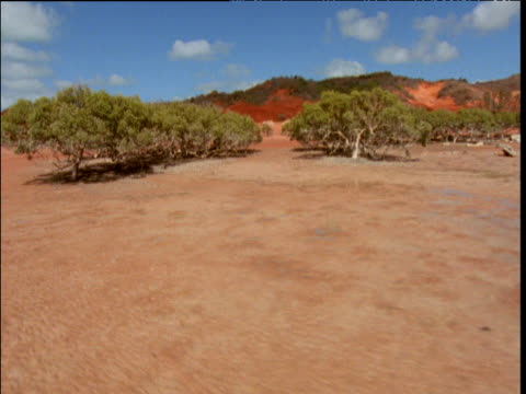 track left past red sandy coast, mud flats and exposed mangroves at low tide, broome, western australia - ebbe stock-videos und b-roll-filmmaterial