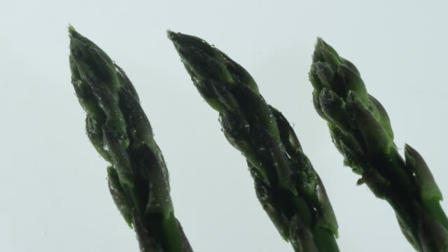 track over asparagus spear tips, uk - panning stock videos & royalty-free footage