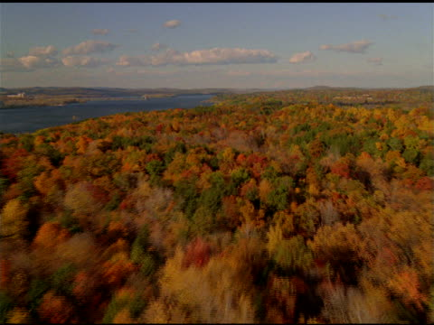 stockvideo's en b-roll-footage met track over autumn trees and lakes, new england - plant attribute