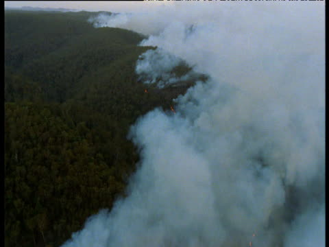Track over billowing smoke from bush fires, New South Wales, Australia