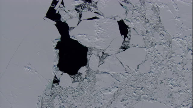 track over broken edge of sea ice, hudson bay. available in hd. - iceberg ice formation stock videos & royalty-free footage