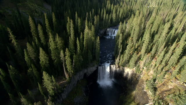 Track over colonnade falls and conifer forest, Yellowstone, USA