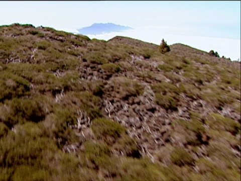 track over dry green foliage to cratered vent of cumbre vieja volcano surrounded by fluffy white cloud island of la palma - isole dell'oceano atlantico video stock e b–roll