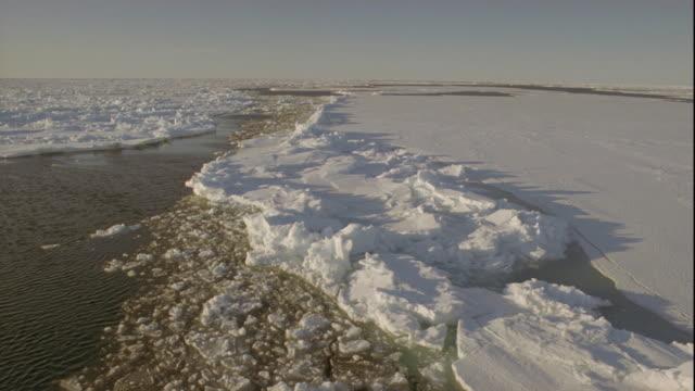 track over edge of pack ice, alaska, usa - arctic stock videos and b-roll footage