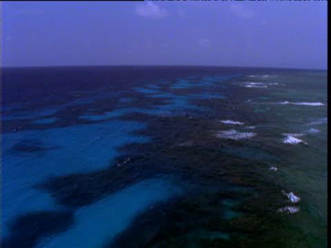 vidéos et rushes de track over edge of tropical coral reef and shallow sea, great barrier reef, queensland, australia - angle de prise de vue