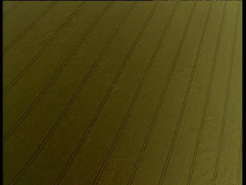 vídeos y material grabado en eventos de stock de track over fields containing geometric tractor lines, uk - monocultivo