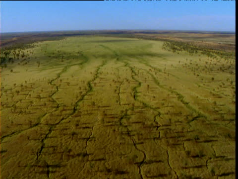 Track over green desert after rains, Simpson Desert, South Australia