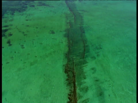 track over green ningaloo reef, western australia - shallow stock videos & royalty-free footage