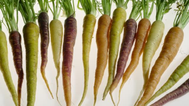 track over heirloom varieties of carrot, uk - contrasts stock videos & royalty-free footage