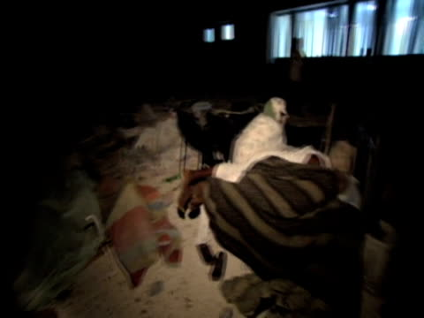 vídeos de stock e filmes b-roll de track over injured people lay on floor of hospital grounds at night as they wait for treatment following devastating earthquake haiti 14 january 2010 - hispaniola