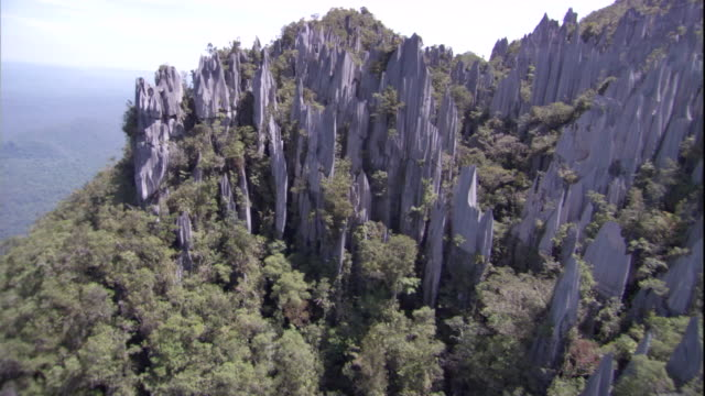 track over limestone pinnacles and rainforest, gunung mulu national park. available in hd. - borneo stock-videos und b-roll-filmmaterial
