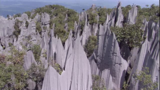 vídeos de stock e filmes b-roll de track over limestone pinnacles and rainforest, gunung mulu national park. available in hd. - pináculo formação rochosa
