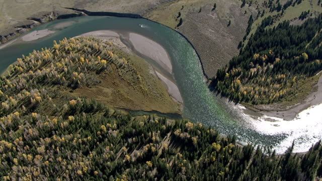 track over meandering river and forest, yellowstone, usa - river yellowstone stock videos and b-roll footage