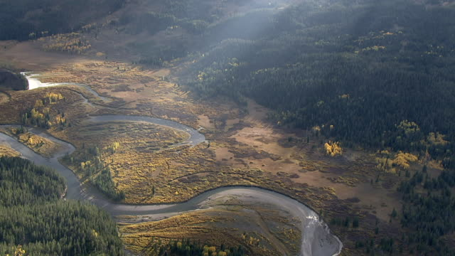 track over meandering river, yellowstone, usa - river yellowstone stock videos and b-roll footage