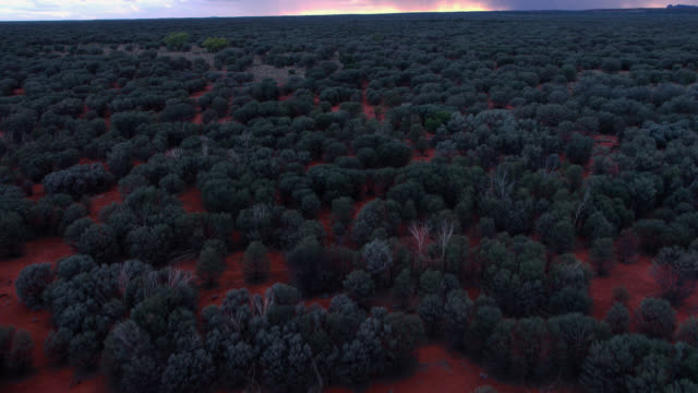 track over outback, australia. - northern territory australia stock videos & royalty-free footage