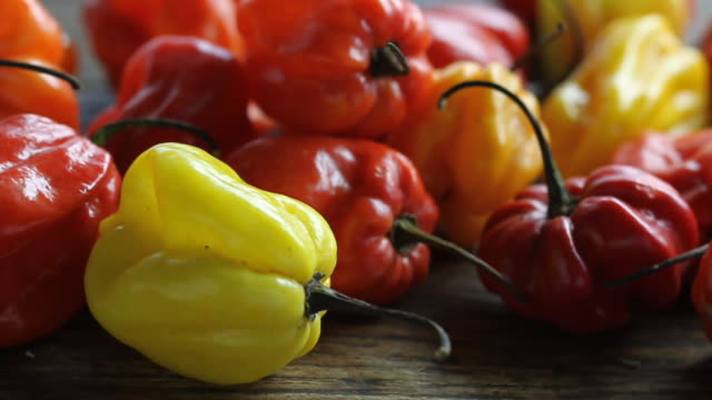track over scotch bonnet - bonnet stock videos and b-roll footage