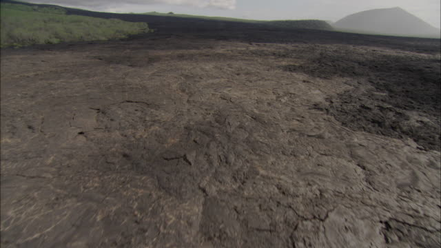 track over solidified lava, galapagos islands available in hd. - galapagos islands stock videos & royalty-free footage