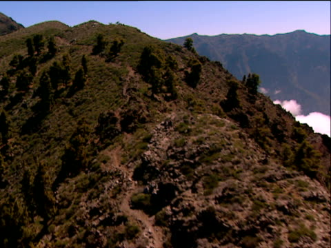 track over sparse smattering of trees on hillside to vent core of cumbre vieja volcano la palma - isole dell'oceano atlantico video stock e b–roll