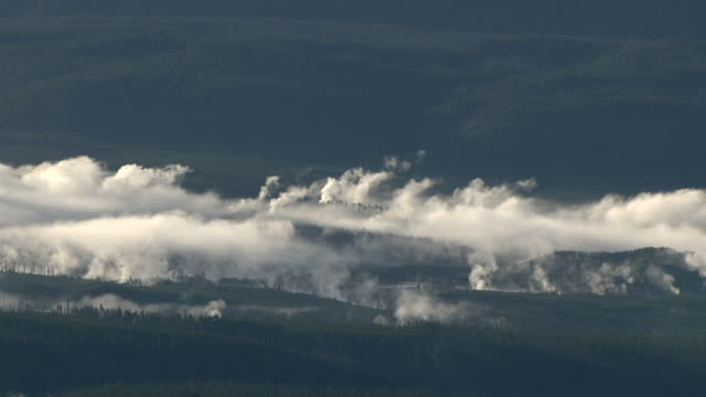 track over steaming hot springs and forests, yellowstone, usa - bbc stock videos and b-roll footage