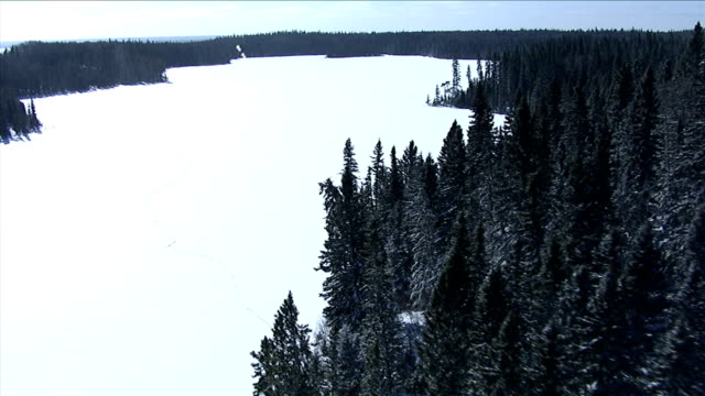 track over vast, dense forests to a remote log cabin at the edge of a frozen lake, northern canada. available in hd. - 寒帯林点の映像素材/bロール