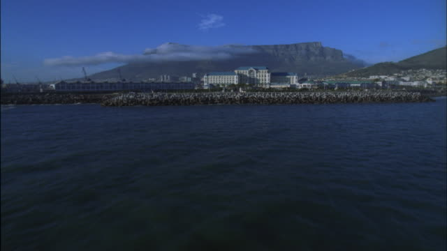 vídeos de stock, filmes e b-roll de track over victoria and alfred waterfront development with table mountain in background, cape town available in hd. - província do cabo oeste
