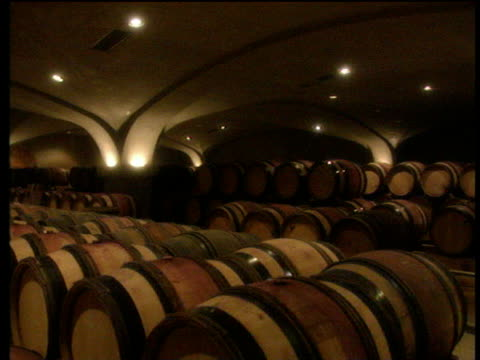 track past barrels of wine in large dimly lit wine cellar - wine cask stock videos and b-roll footage