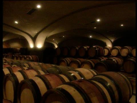 vídeos de stock, filmes e b-roll de track past barrels of wine in large dimly lit wine cellar - barril