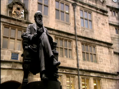 track right around statue of charles darwin shrewsbury - チャールズ・ダーウィン点の映像素材/bロール