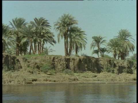 Track right from boat along palm trees on banks of River Nile