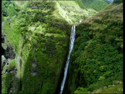 vídeos de stock, filmes e b-roll de track right over tall and narrow waterfall surrounded by lush green forest and rocky cliffs marquesas islands - territórios ultramarinos franceses