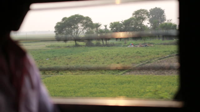 track shot out of a window of a driving train that is passing rice fields on its way to kolkata. - kolkata stock videos & royalty-free footage
