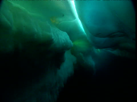 track through crevice in ice floe, arctic northwest territories - crevice stock videos & royalty-free footage