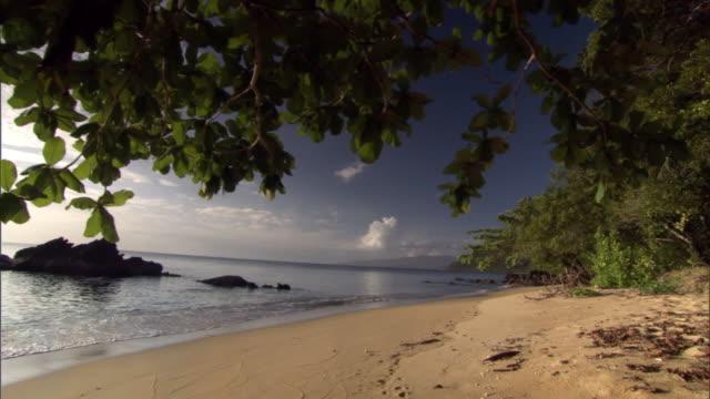 Track under tree over tropical beach, Madagascar