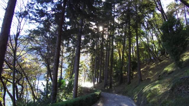 Track under trees on Lake Como