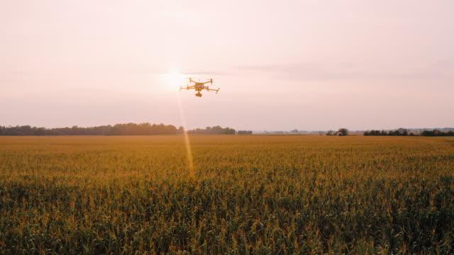 空中ドローンを追跡し、日没時にフィールドの上を飛ぶ - ファームハウス点の映像素材/bロール