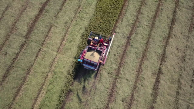tracking aerial shot of harvesting - agricultural machinery stock videos & royalty-free footage