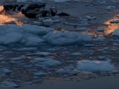mcu tracking left past ice floes in still water reflecting mountain peak, zoom out to mountains of paradise bay area, antarctic peninsula - antarctic peninsula stock videos & royalty-free footage