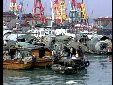 ms tracking right, densely moored junks/sampans in harbour, hong kong - サンパン点の映像素材/bロール