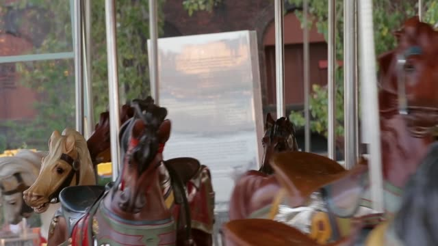 Tracking Shot a young boy and his mother ride the carousel Janes Carousel is a classic 3row machine with 48 exquisitely carved horses and two superb...