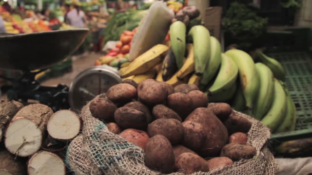 tracking shot across fruit and vegetables on a market stall. - potato stock videos and b-roll footage