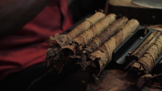 tracking shot along a row of rolled havana cigars. - cuba stock videos and b-roll footage